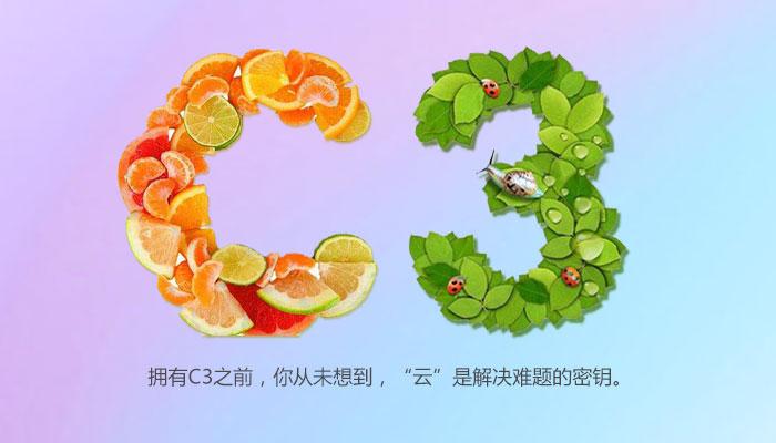 C3拼图.jpg