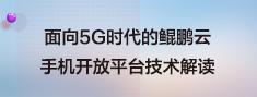 面向5G时代的鲲鹏云.png